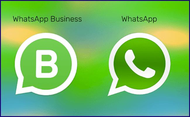 Whatsapp x Whatsapp Business