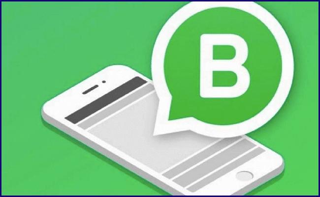 Guia Completo WhatsApp Business